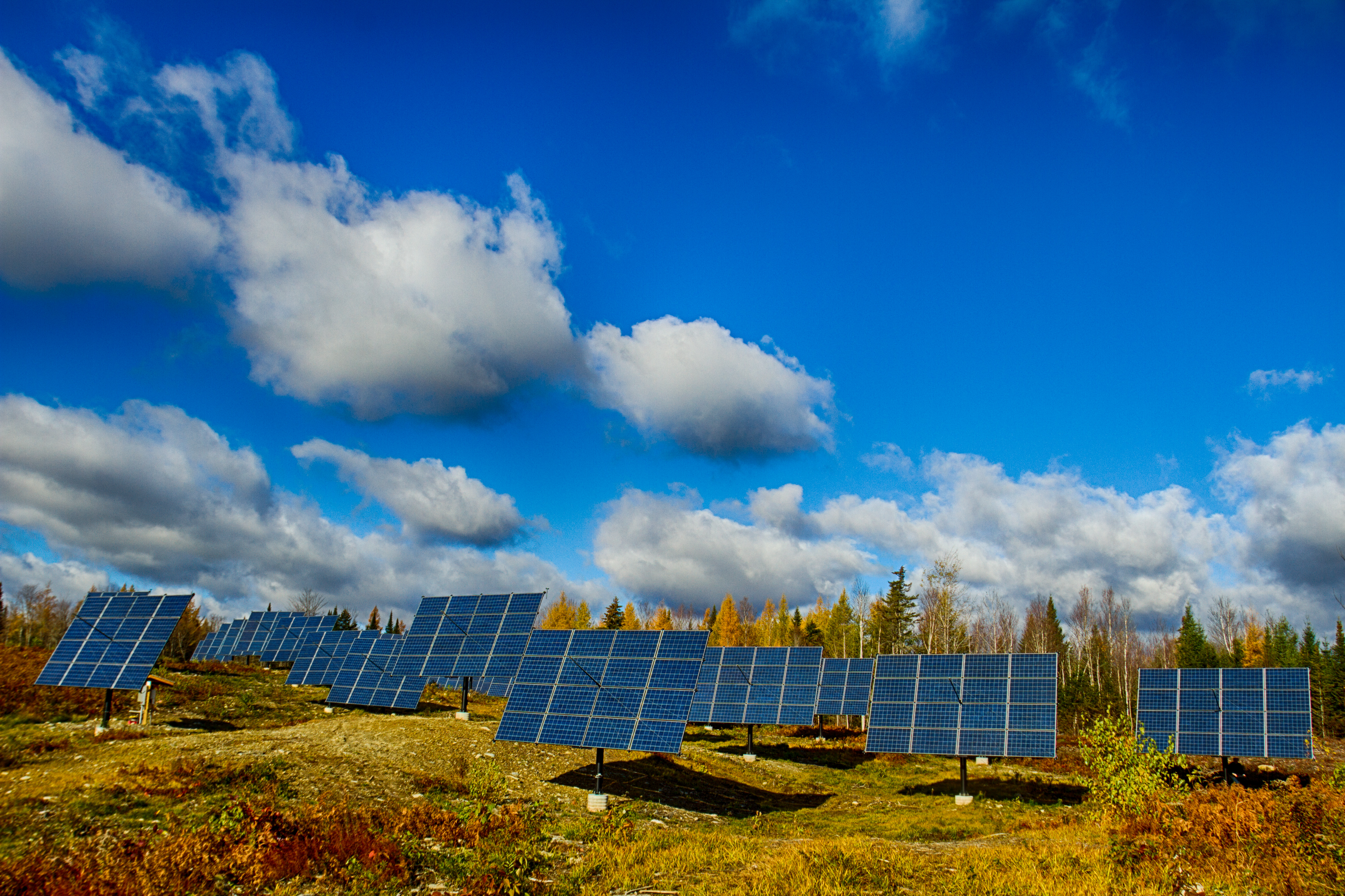 Solar Trackers In Action Solaflect Energy Tracker